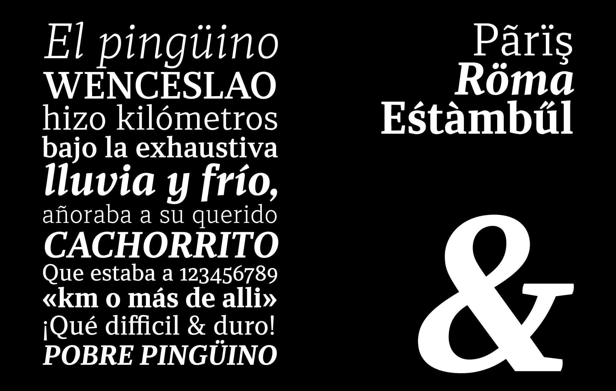 Carlos_de_Toro_Type_Design25