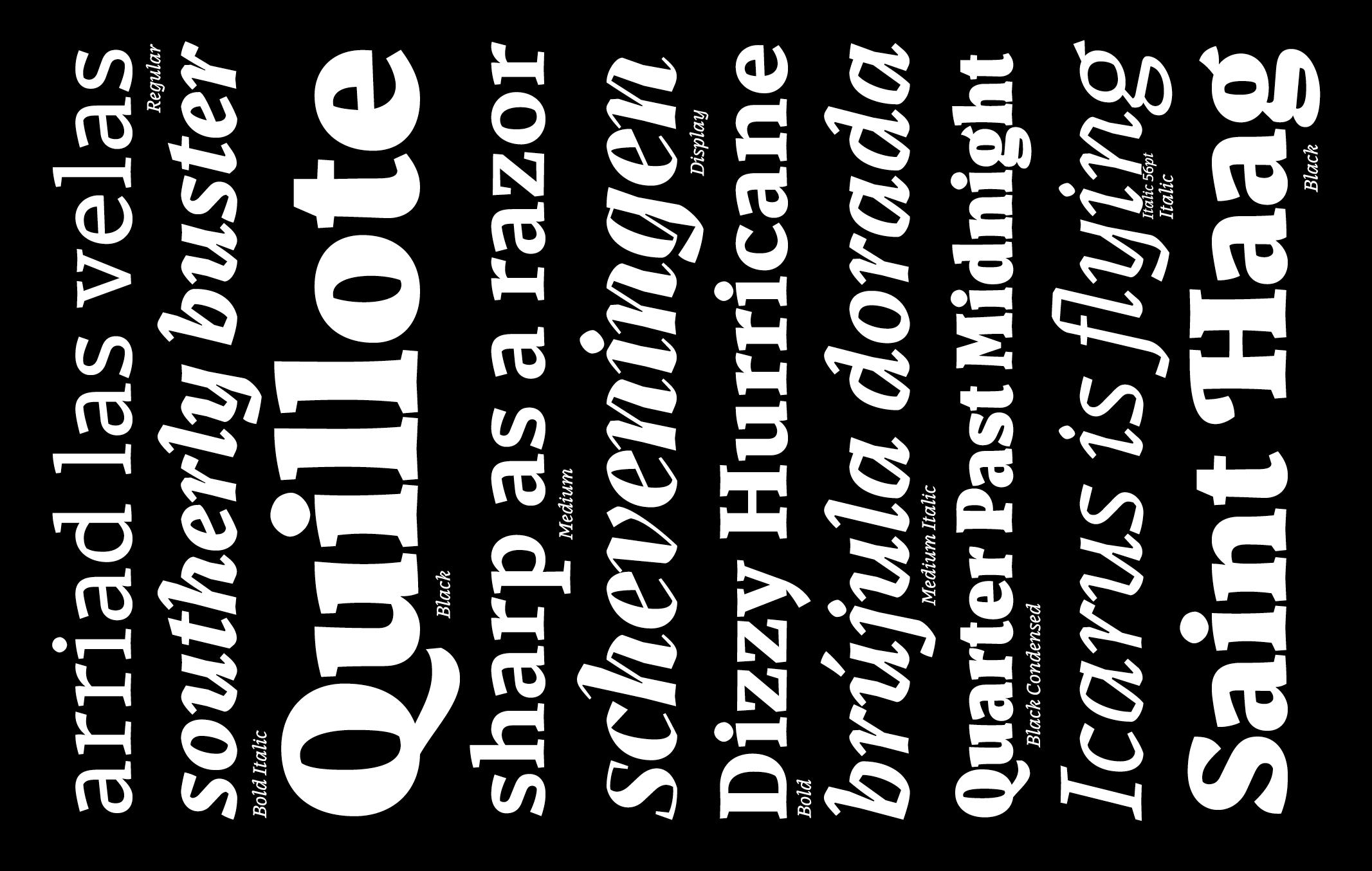 Carlos_de_Toro_Type_Design32-1 (2)