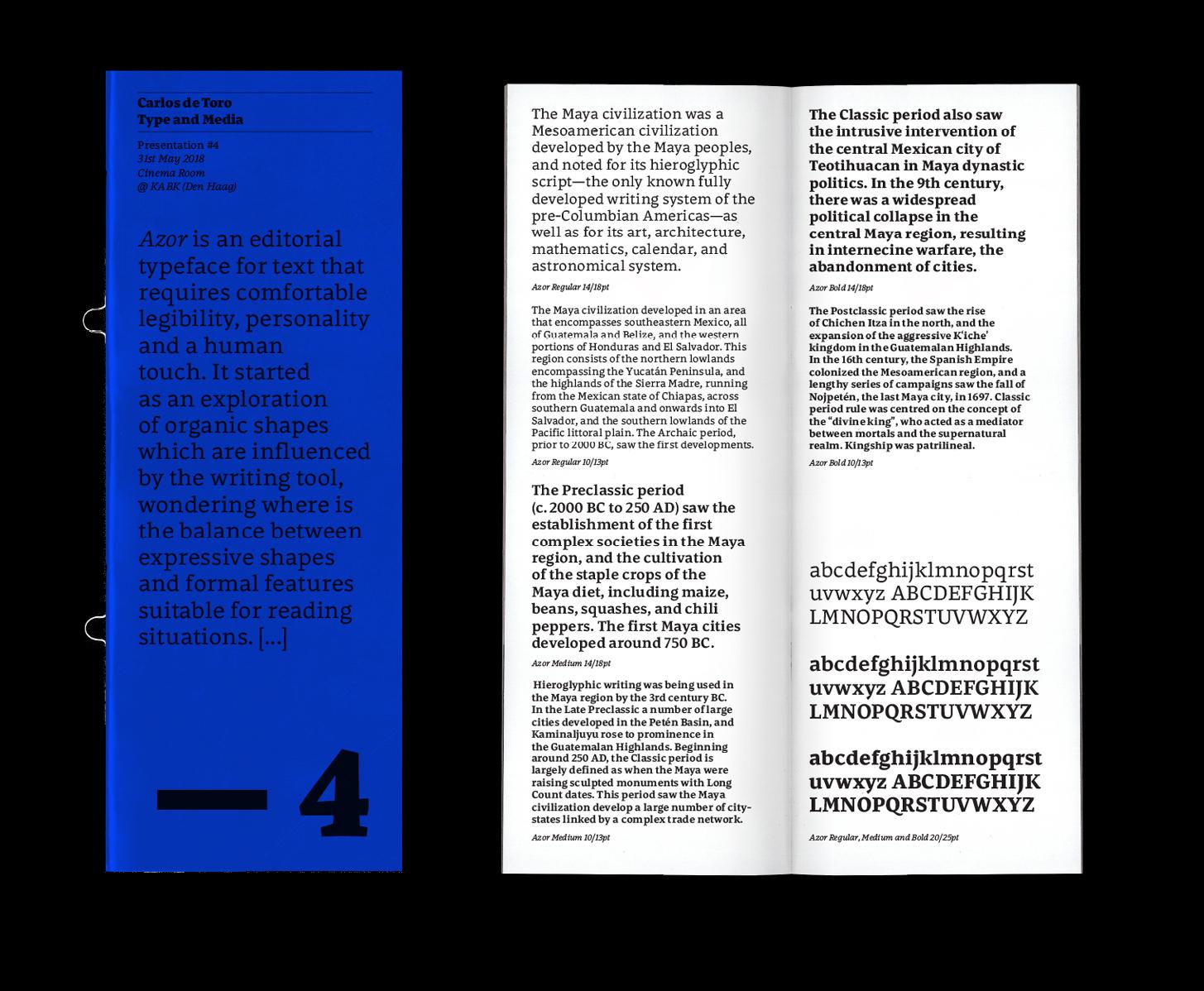 Carlos_de_Toro_Type_Design19Web